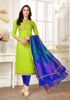 Green Blue Pc Cotton Kurti 1008